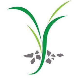 Mighty Epiphyte LLC profile picture