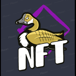 brucethegoose.eth profile picture
