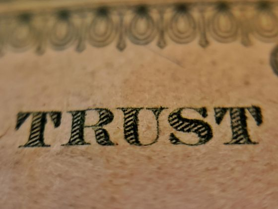 Cover image for In Community We Trust